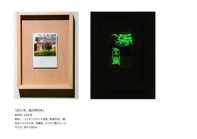 2作品紹介_2、2013年、庭の柿の木.jpg